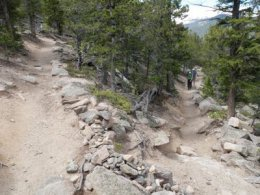 After climbing the ridge,  the trail cuts into the heart of the mountain where a series of switchbacks gently ascend.