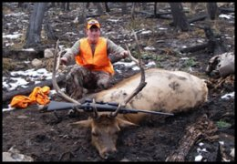 Big Game Hunts With West Elk Wilderness Outfitters