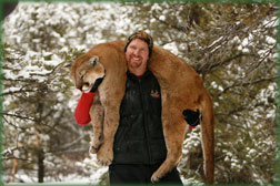 Colorado Mountain Lion Hunts guided by Cat Track Outfitters