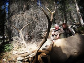 Elk Hunting in Colorado