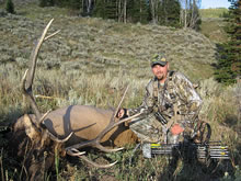 Elk kill near our Montana hunting lodge