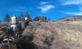 Flat Tops First Season Elk Hunt