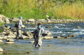 Fly-fishing on the Animas River in Durango