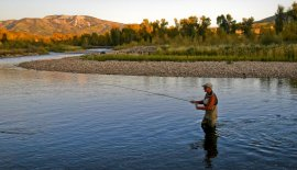 Fly-fishing on the Yampa River near Steamboat Springs, CO