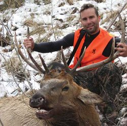 how to get a hunting license in colorado