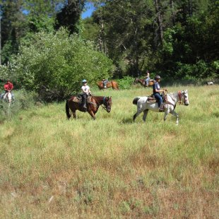 guest ranch horseback trail riding