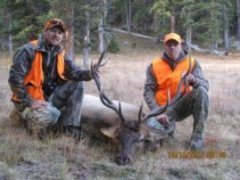 Mike's Great 5x5 Colorado Bull Elk