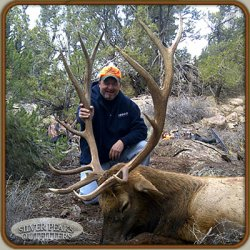 Nick also gets a wallhanger trophy 6x6 Bull Elk with Silver Peaks Outfitters