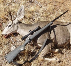 Best gun for hunting elk