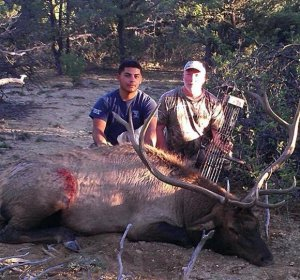 Colorado archery Elk hunts