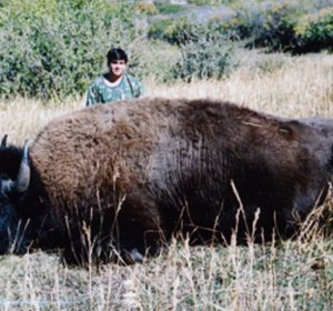 Colorado Buffalo hunting