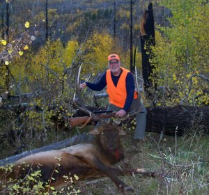 Colorado Elk hunting Outfitters Drop camps