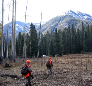 Colorado Elk hunting units