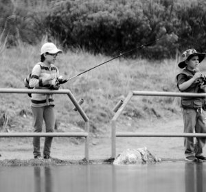 Colorado fishing license online hunting in colorado for Colorado fishing laws