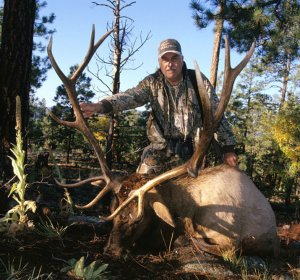 Colorado hunting license non Resident