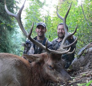 Elk hunting Colorado tips