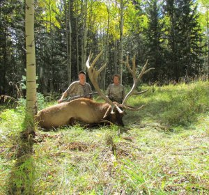 Elk hunting Ranch in Colorado