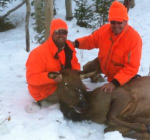 Elk hunts in Colorado