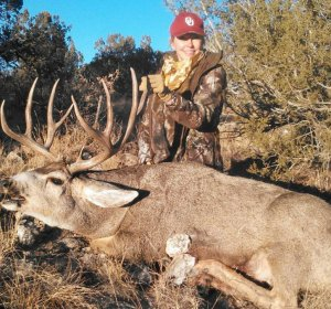 New Mexico Elk hunts for sale