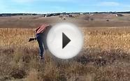 Antler Outfitters Colorado Pheasant & Chukar Hunting
