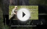 BEAR And WHITETAIL DEER Hunting Guides & Outfitters