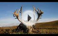 Big Game Hunting - Pampa Adventures