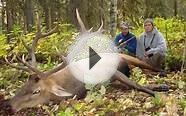 British Columbia Elk Hunt During the Rut - Outfitter