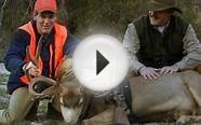 Colorado Big Game Hunting & Ranching for Wildlife: Kessler