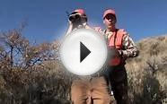 Colorado Hunting Lodges & Resorts: Kessler Canyon Bird