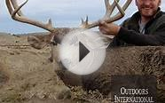 Colorado Mule Deer Hunting on Private Ranch