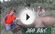 Colorado Rifle Elk Hunt - MossBack