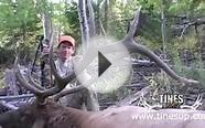 Elk Hunt:Hunting Elk in Southern Utah for a BIG 6x6, Full