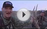 Elk Hunts, elk hunting outfitters, bison hunting guides