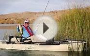 Fishing In Arizona - Lake Havasu City