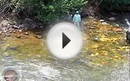 Fly Fishing secret water in Colorado (TV)
