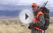 Four Tips For Hunting Post-Rut Elk