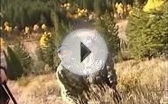 Golightly Trophy Elk Hunts in Idaho