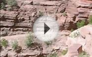 Grand Canyon National Park - North Kaibab Trail Eye of the