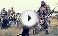 Guided Colorado Waterfowl Hunts - Birds & Bucks Outdoors