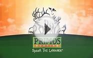 Gun Hunting Elk in New Mexico with Team Primos _PTAH1101