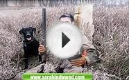 Hunting Dog Names Tips - Dog Training Colorado Springs CO