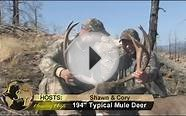 Hunting Mule Deer in British Columbia