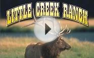 Little Creek Ranch - Colorado Elk Hunts