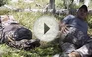 Missionary Ridge Productions | Elk Hunting 2014 | Durango Co.