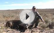 New Mexico Mule Deer Hunting 2010 with Cedar Creek Outfitters