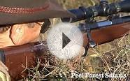 Peel Forest Safaris - Big Game Hunting