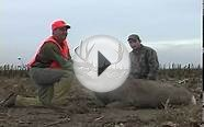 Rifle Mule Deer Hunt Darren Kolbe Eastern Colorado