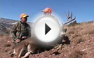 Rifle Mule Deer Hunt in Colorado with Jay Scott