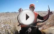 Rocky Mountain Ranches, Ltd. - Quality Private Land Hunting