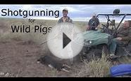 The Best Gun For Hunting Wild Pigs In Australia Part 4